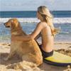 Pripravte psa na dovolenku